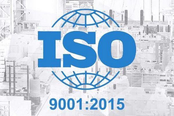 Кто должен получать сертификат ISO 9001?