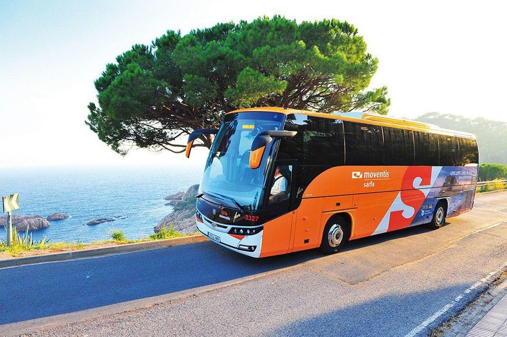 Нужен автобус на море? Компания «Везем в лето» - лучший выбор